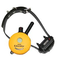 E-Collar miniEducator One